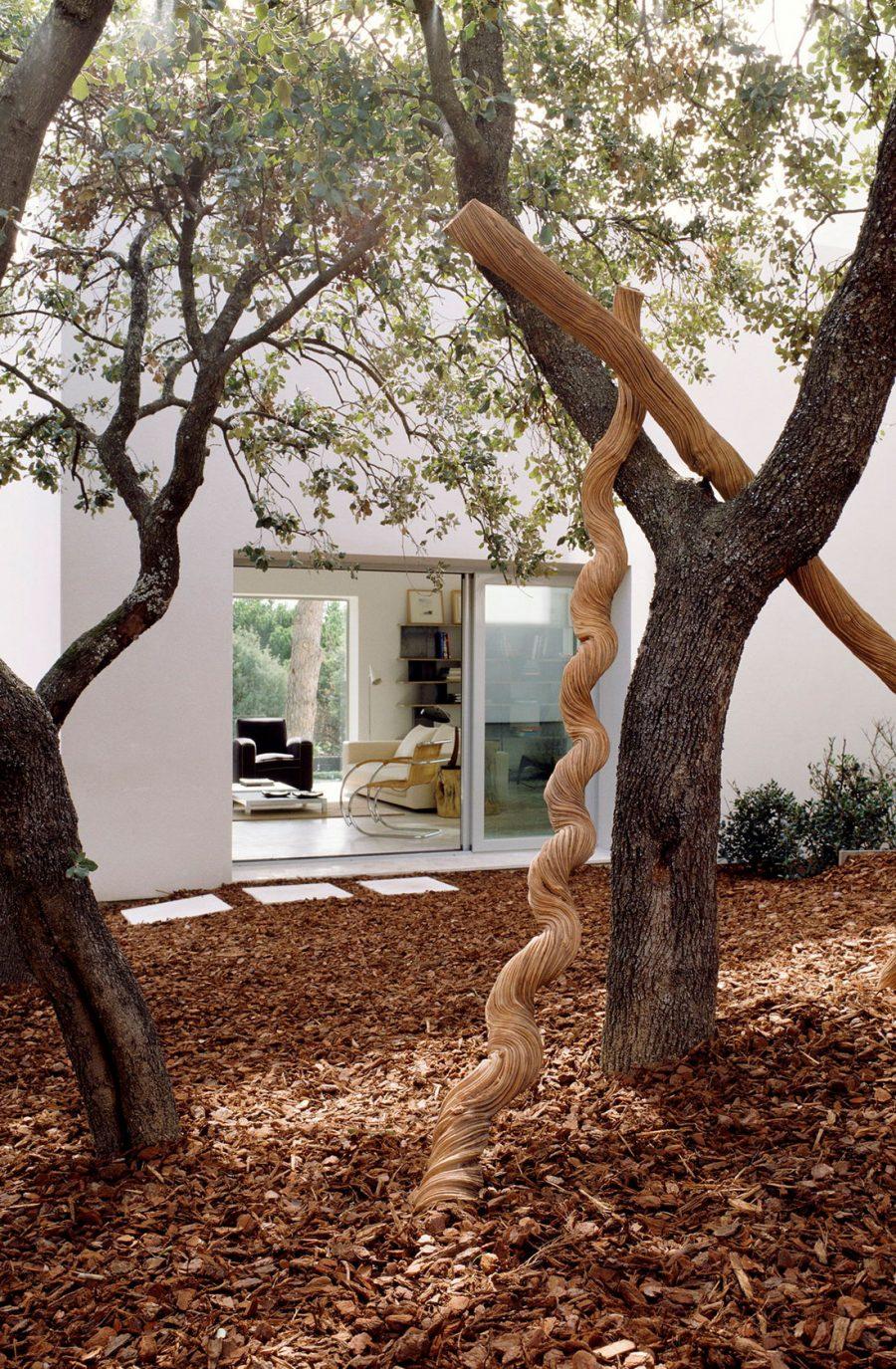 Vista general del Jardín del proyecto de ÁBATON Arquitectura Casa del Pico