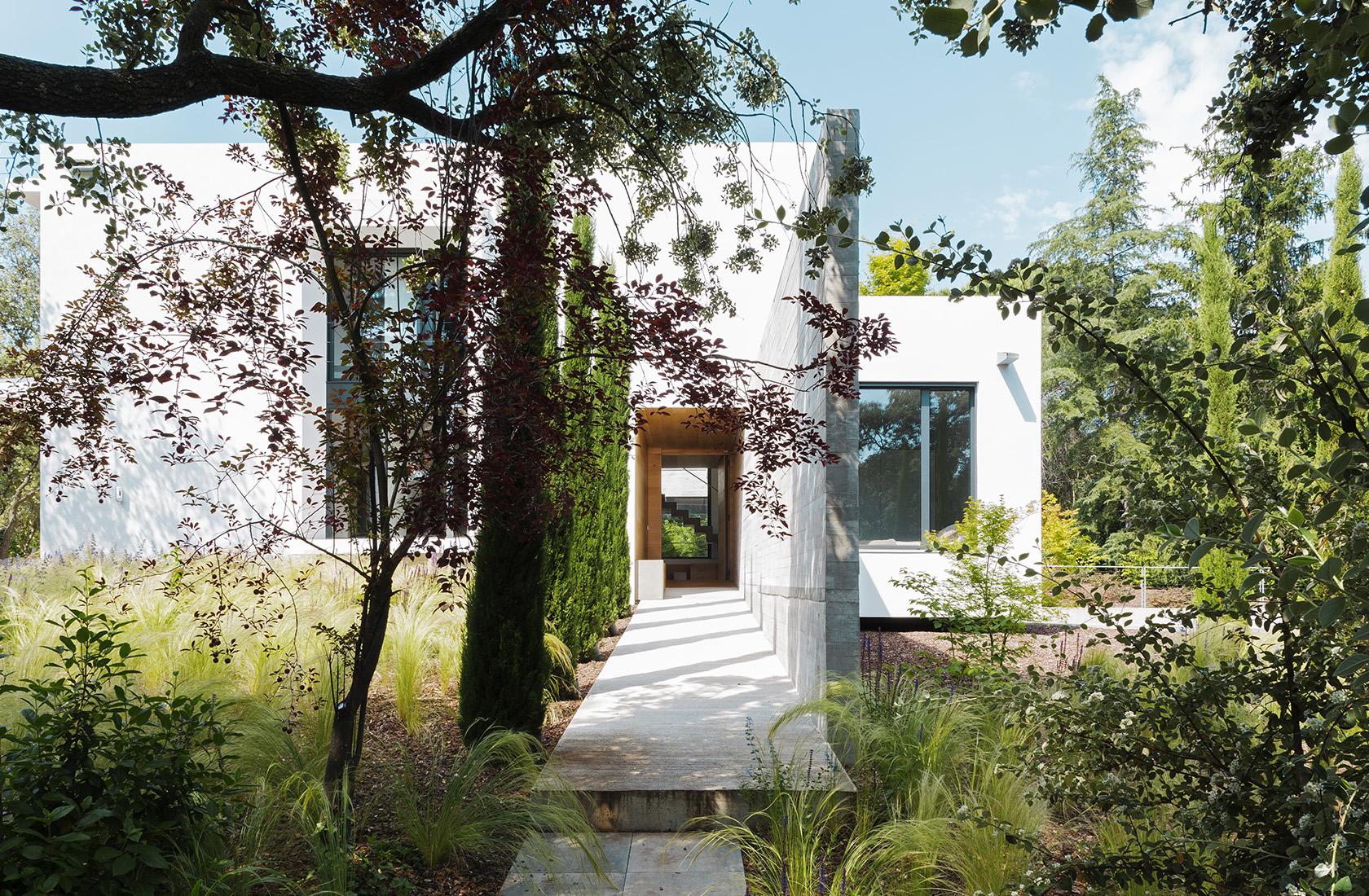 Acceso con vegetación a Casa CH, vivienda construida en madera
