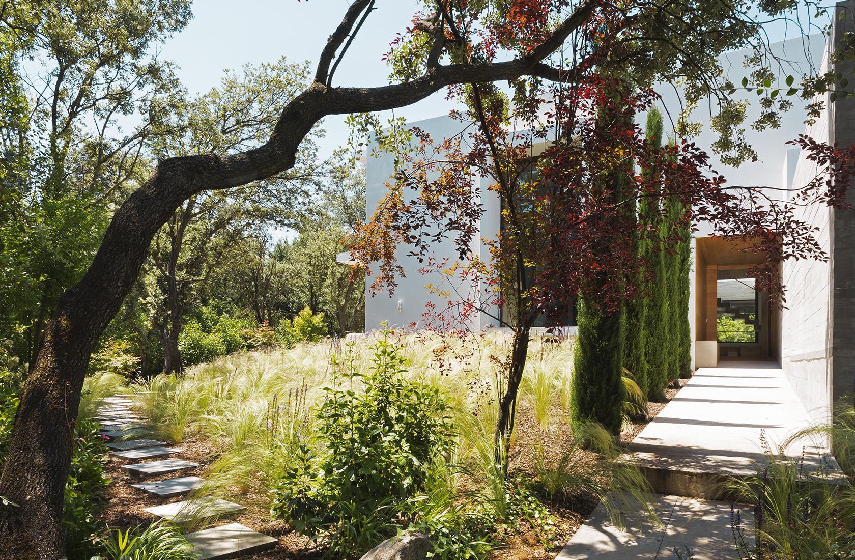 Vista general del paisajismo en el jardín realizado por ÁBATON para la Casa CH