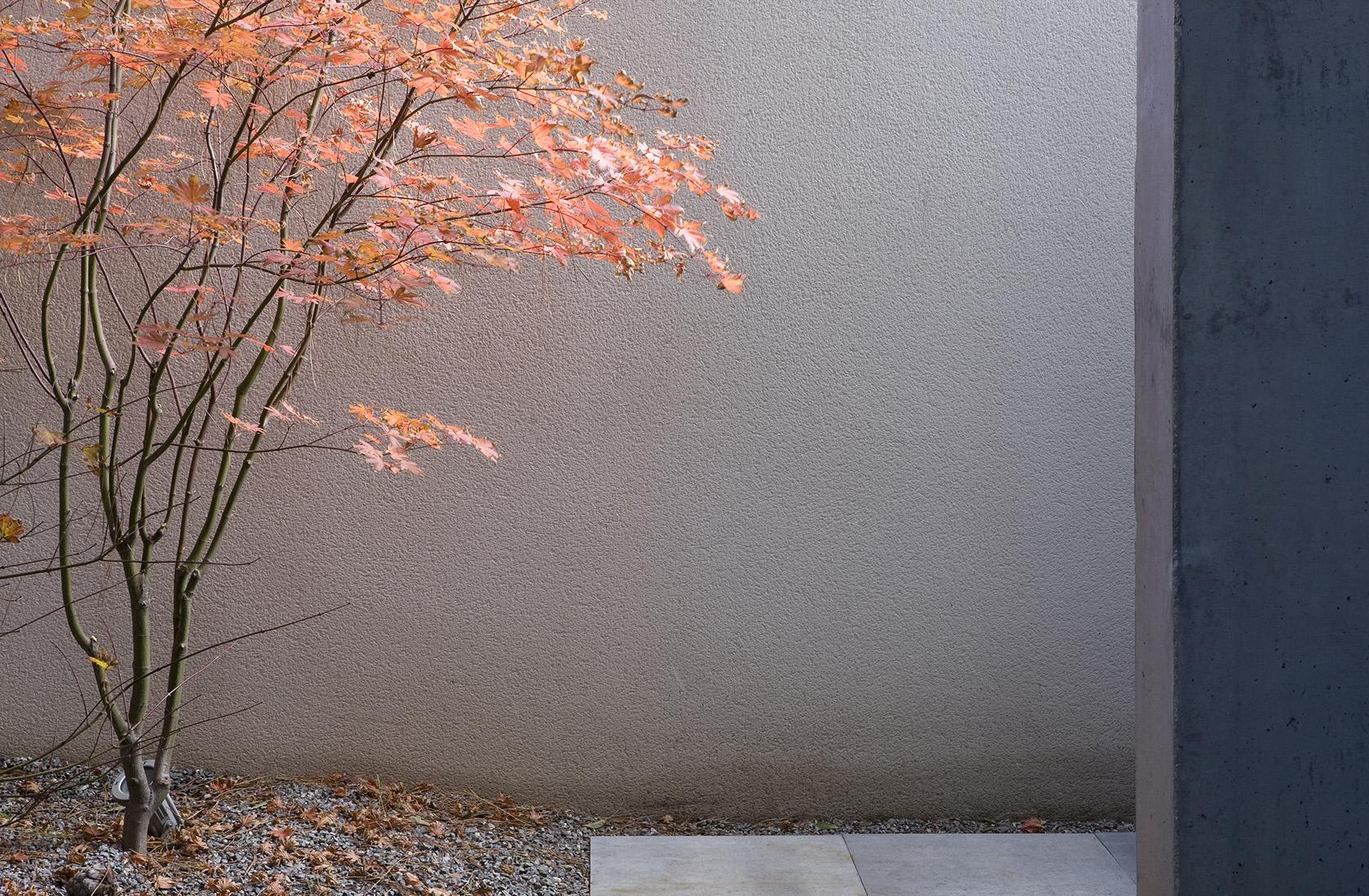 Detalle del paisajismo creado por ÁBATON Arquitectura en su sede