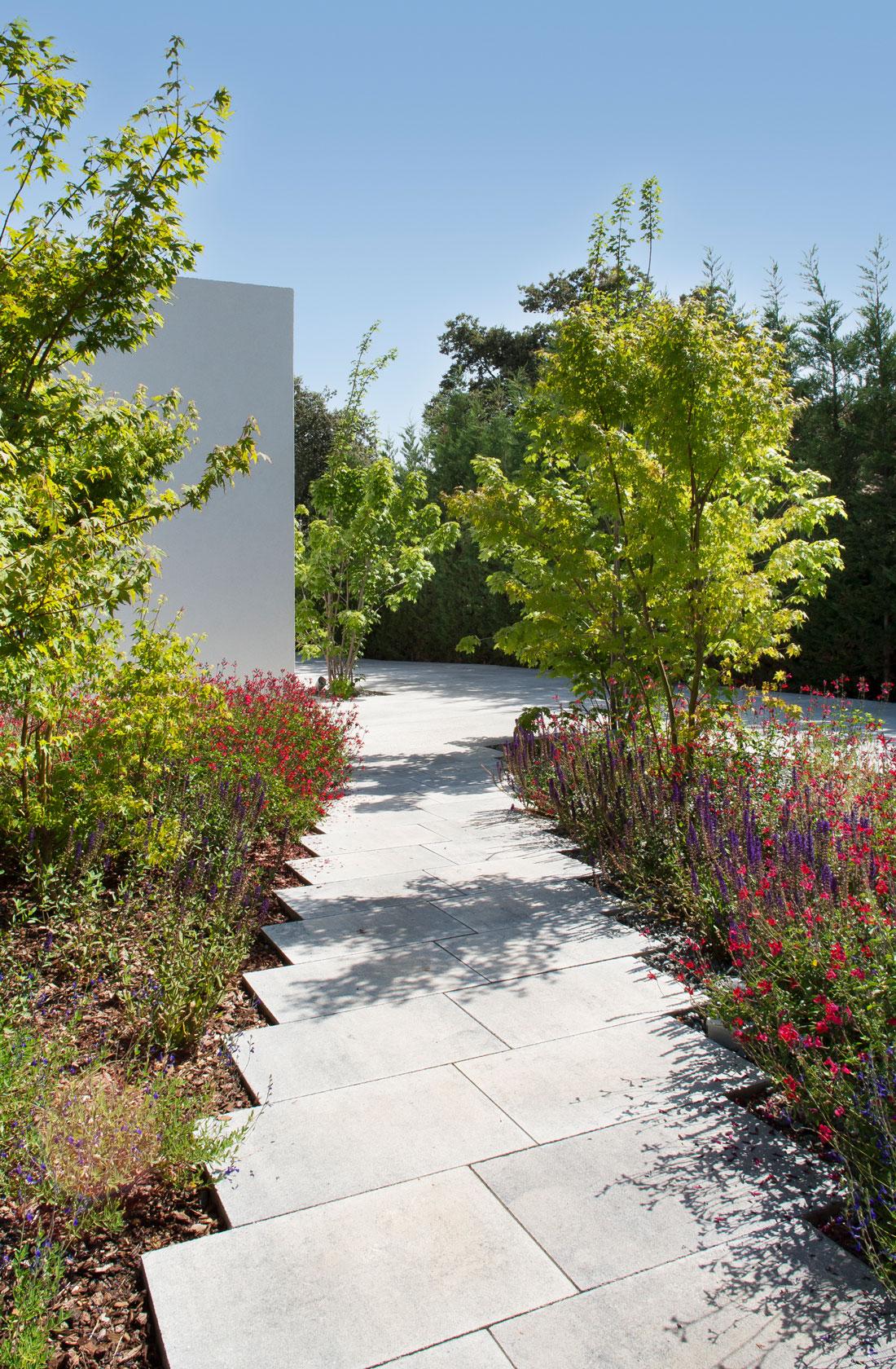Camino de Acceso a la vivienda en el paisajismo del jardin de reforma en la moraleja