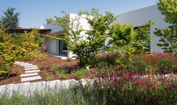 Proyecto de arquitectura paisajismo en la moraleja 2